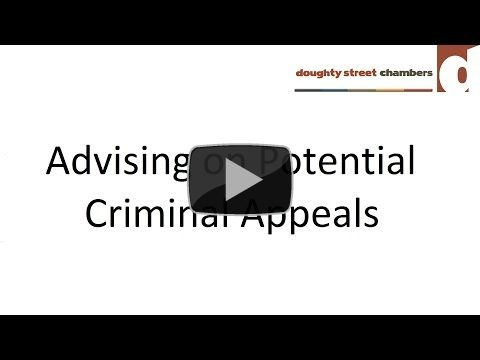 Advising on Potential Criminal Appeals